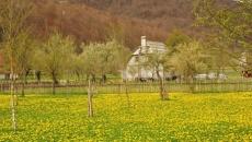Trip to Albanian Alps